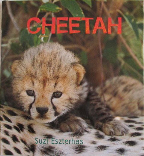 Front cover of Cheetah by Suzi Eszterhas