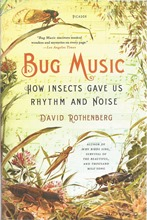 Front cover of Bug Music by David Rothenberg