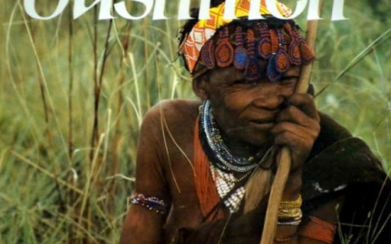Front cover of The Bushmen by Wannenburgh; Johnson & Bannister
