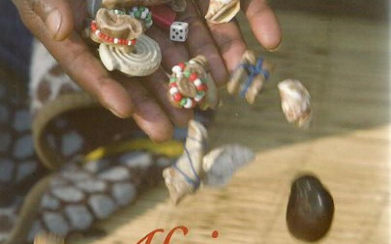 Front cover of African Magic by Heidi Holland