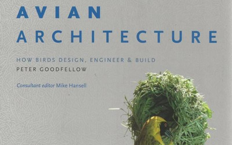 Front cover of Avian Architecture by Peter Goodfellow