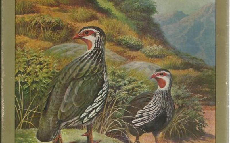 Front cover of Gamebirds of Southern Africa by P.A. Clancey