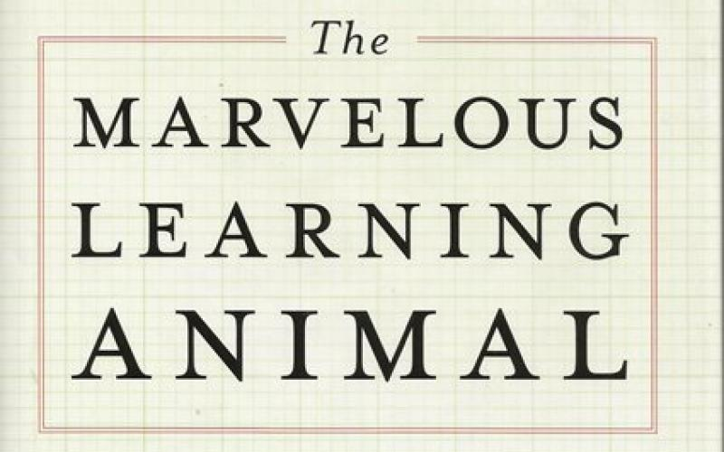 Front cover of The Marvelous Learning Animal by Arthur W Staats