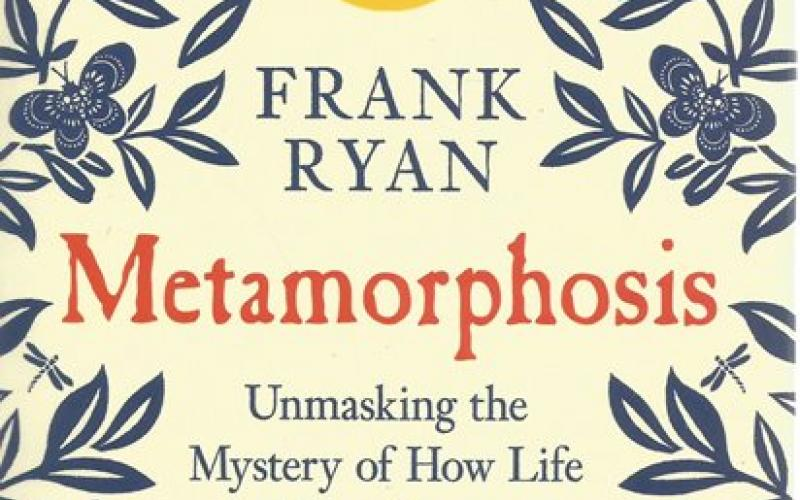 Front Cover of Metamorphosis by Frank Ryan