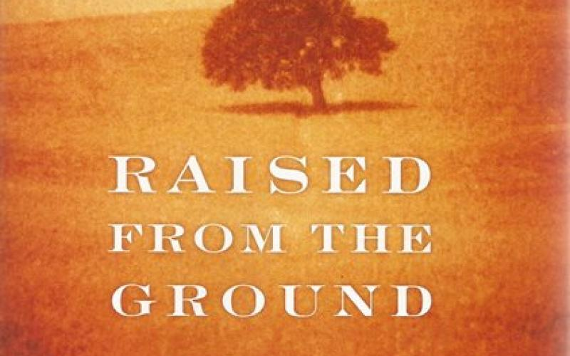 Front cover of Raised From the Ground by Jose Saramago