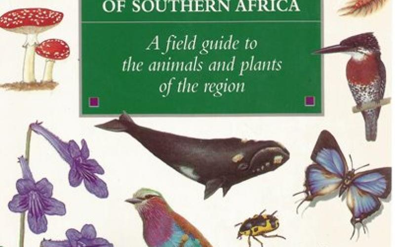 Front Cover of The Wildlife of Southern Africa by Vincent Carruthers