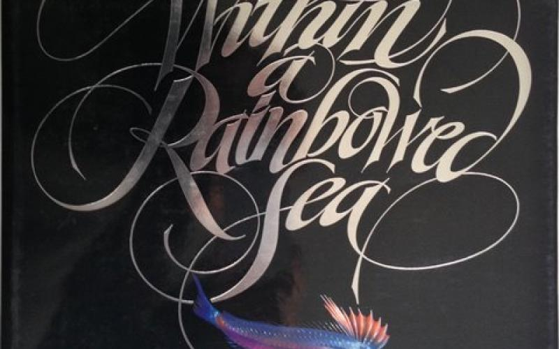 Front Cover of Within a Rainbow Sea by Christopher Newbert