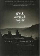 Front cover of One Moonlit Night by Caradog Prichard