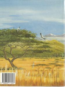 Back Cover of The Hunter and the Go-Away Bird by Stephen J Smith