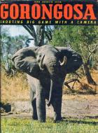 Front cover of Gorongosa by Joao Augusto Silva