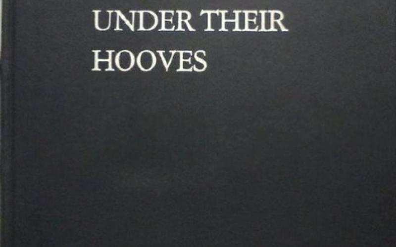 Front slipcase cover of Gold Under Their Hooves by John Collings