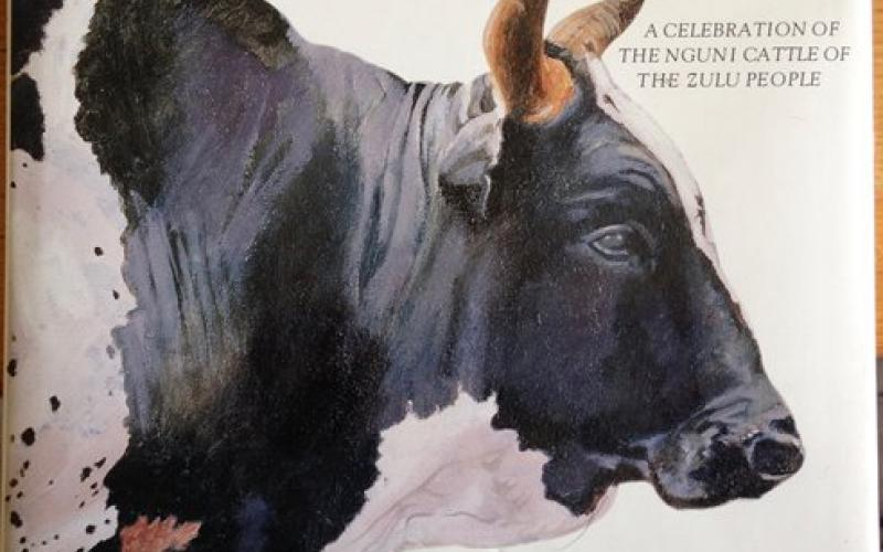 Front cover of The Abundant Herds by Marguerite Poland and David Hammond-Tooke