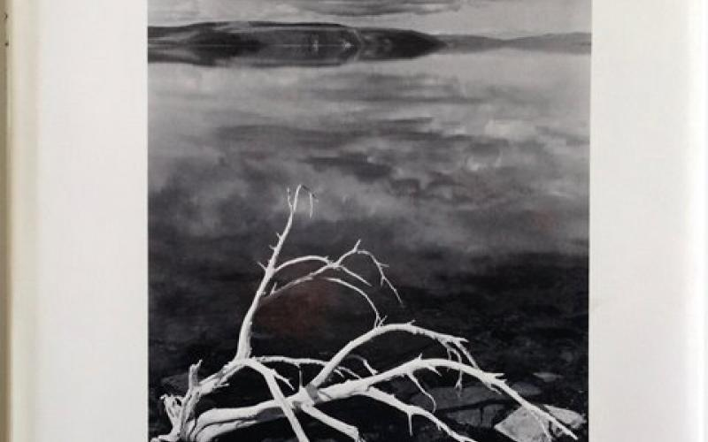 Front Cover of Ansel Adams edited by Liliane De Cock