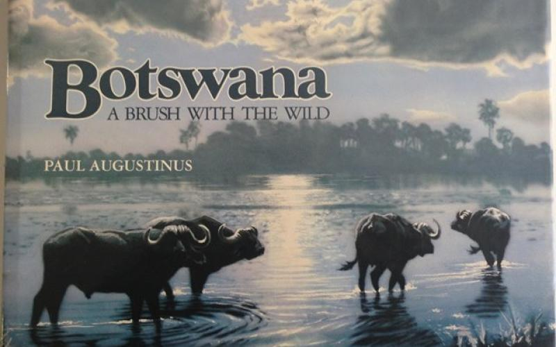 Front Cover of Botswana by Paul Augustinus
