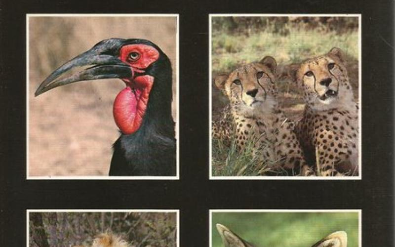Front Cover of Kruger National Park by PF Fourie