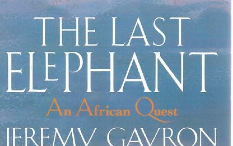 Front Cover of The Last Elephant by Jeremy Gavron