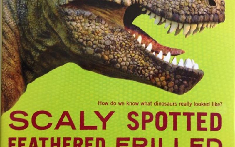 Front cover of Scaly Spotted Feathered Frilled by Catherine Thimmesh
