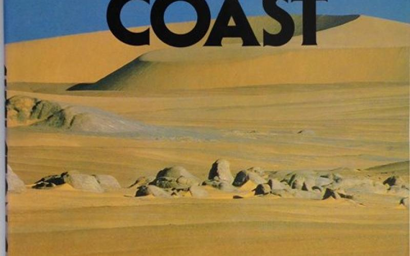 Front Cover of Skeleton Coast by Amy Schoeman