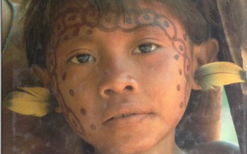 Front Cover of Vanishing Amazon by Mirella Ricciardi