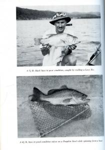 Back cover of Bass Fishing in Southern Africa by A. B. W. Impey
