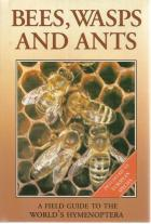 Front Cover of Bees, Wasps and Ants by J Zahradnik